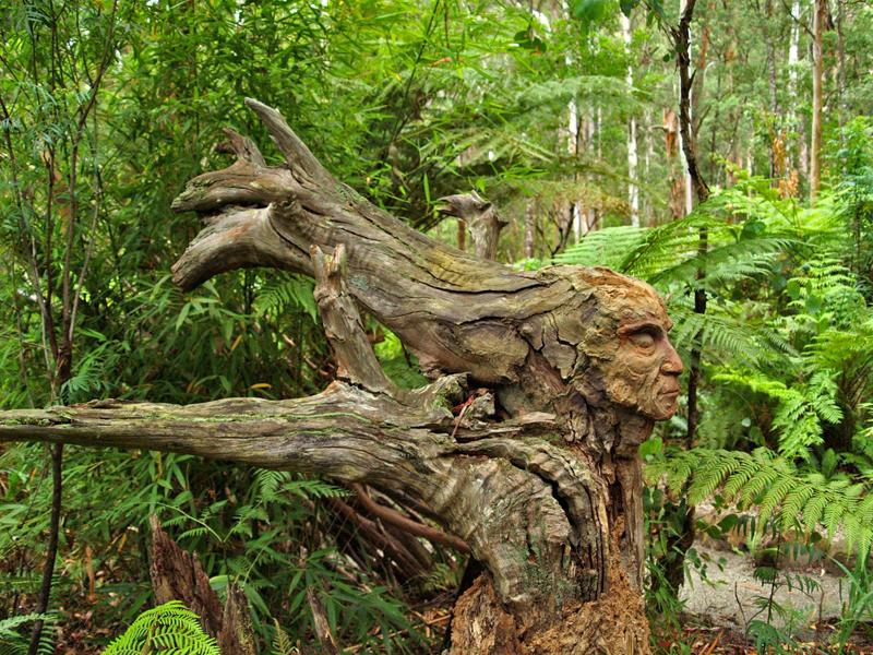 marysville-jardins-australia