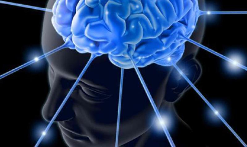 memoria-celular
