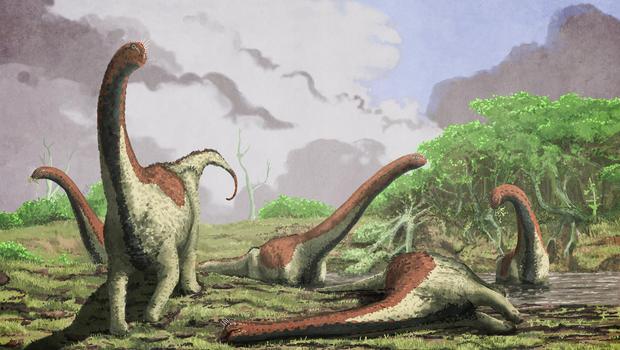 dinosaurphoto