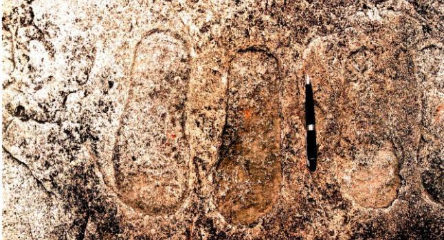 foot-print-original-print-671x450