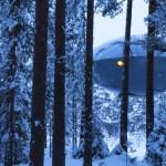 Habitació OVNI boscos Harads
